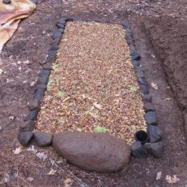 lichen decorates a grave